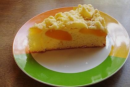 Marillen (Aprikosen) - Rahmkuchen mit feinen Streuseln 13
