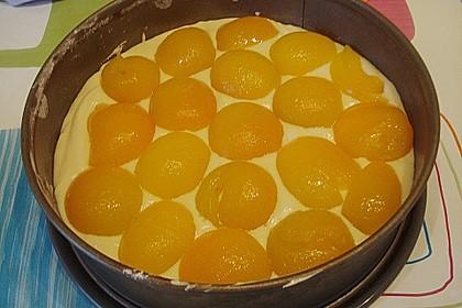 Marillen (Aprikosen) - Rahmkuchen mit feinen Streuseln 45