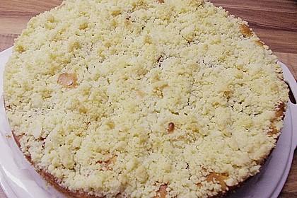 Marillen (Aprikosen) - Rahmkuchen mit feinen Streuseln 36