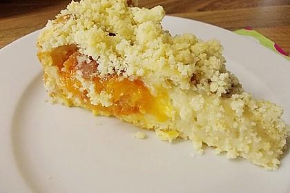 Marillen (Aprikosen) - Rahmkuchen mit feinen Streuseln 21