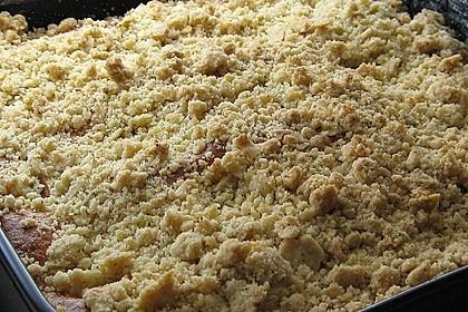 Marillen (Aprikosen) - Rahmkuchen mit feinen Streuseln 31