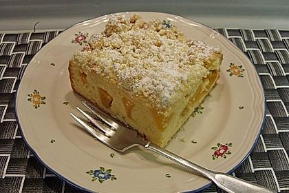 Marillen (Aprikosen) - Rahmkuchen mit feinen Streuseln 11