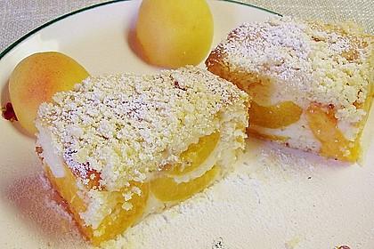 Marillen (Aprikosen) - Rahmkuchen mit feinen Streuseln 2