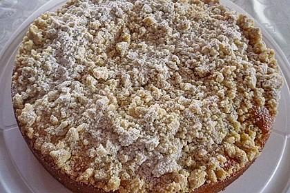 Marillen (Aprikosen) - Rahmkuchen mit feinen Streuseln 23