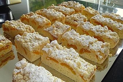 Marillen (Aprikosen) - Rahmkuchen mit feinen Streuseln 4