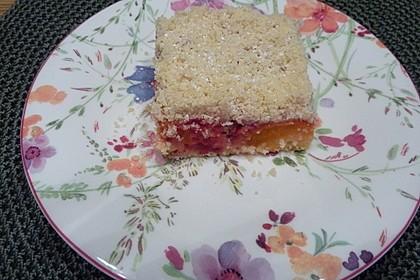 Marillen (Aprikosen) - Rahmkuchen mit feinen Streuseln 16