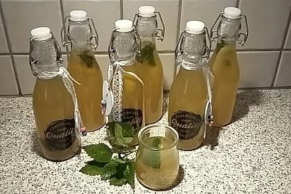 Zitronen - Sirup mit Pfefferminze und Zitronenmelisse 1