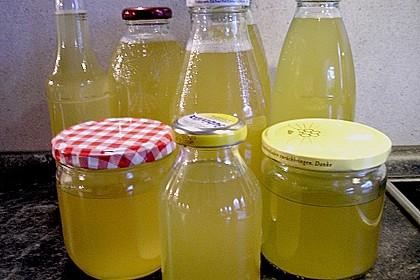 Zitronen - Sirup mit Pfefferminze und Zitronenmelisse 12