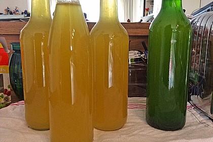 Zitronen - Sirup mit Pfefferminze und Zitronenmelisse 16