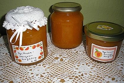 Aprikosen - Orangen- Konfitüre 2