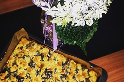 Schneller Quark-Streuselkuchen mit Obst 59