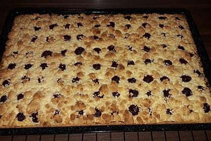 Schneller Quark-Streuselkuchen mit Obst 89