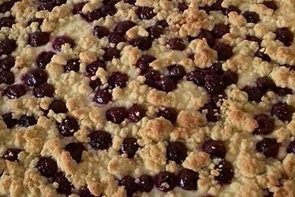Schneller Quark-Streuselkuchen mit Obst 62