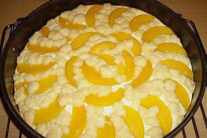 Schneller Quark-Streuselkuchen mit Obst 108
