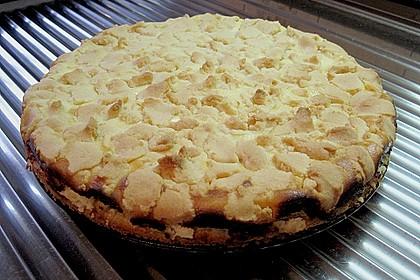 Schneller Quark-Streuselkuchen mit Obst 198