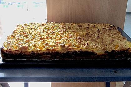 Schneller Quark-Streuselkuchen mit Obst 175