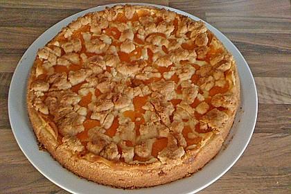 Schneller Quark-Streuselkuchen mit Obst 162