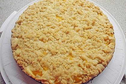 Schneller Quark-Streuselkuchen mit Obst 63