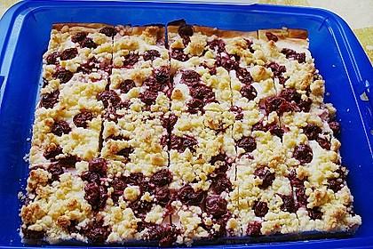 Schneller Quark-Streuselkuchen mit Obst 74