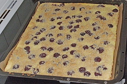 Schneller Quark-Streuselkuchen mit Obst 234