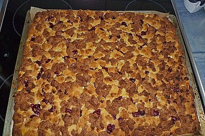 Schneller Quark-Streuselkuchen mit Obst 115