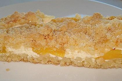 Schneller Quark-Streuselkuchen mit Obst 32