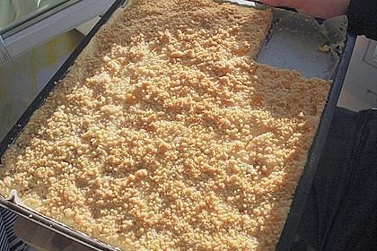 Schneller Quark-Streuselkuchen mit Obst 165