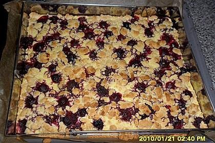 Schneller Quark-Streuselkuchen mit Obst 181