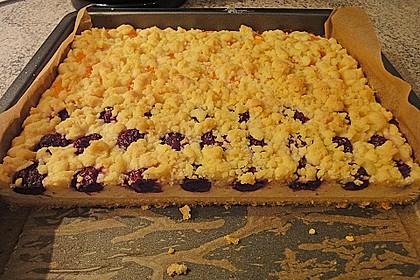 Schneller Quark-Streuselkuchen mit Obst 71