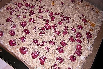 Schneller Quark-Streuselkuchen mit Obst 195