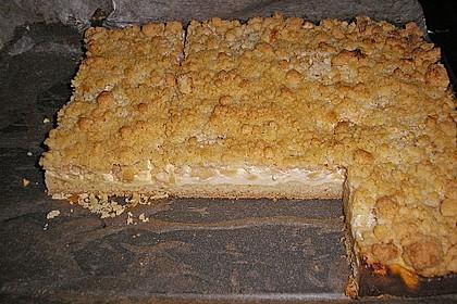 Schneller Quark-Streuselkuchen mit Obst 202
