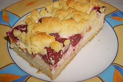 Schneller Quark-Streuselkuchen mit Obst 15