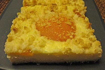 Schneller Quark-Streuselkuchen mit Obst 126