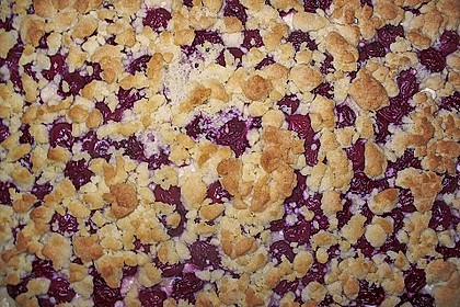 Schneller Quark-Streuselkuchen mit Obst 97