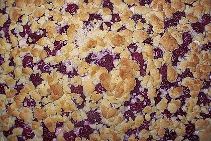 Schneller Quark-Streuselkuchen mit Obst 122