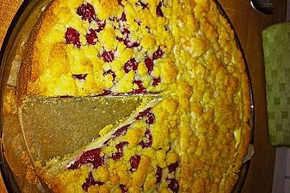 Schneller Quark-Streuselkuchen mit Obst 178