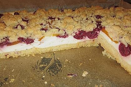 Schneller Quark-Streuselkuchen mit Obst 67
