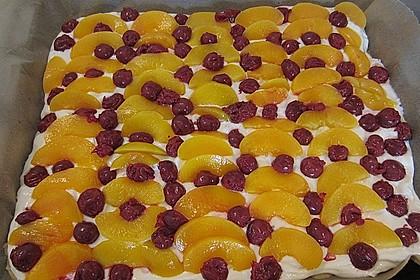 Schneller Quark-Streuselkuchen mit Obst 109