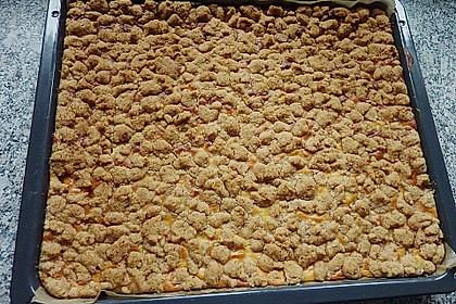 Schneller Quark-Streuselkuchen mit Obst 155