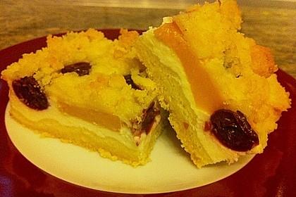 Schneller Quark-Streuselkuchen mit Obst 101