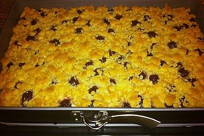 Schneller Quark-Streuselkuchen mit Obst 222