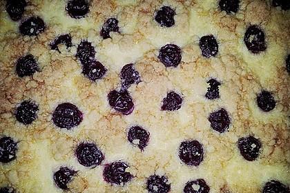 Schneller Quark-Streuselkuchen mit Obst 228
