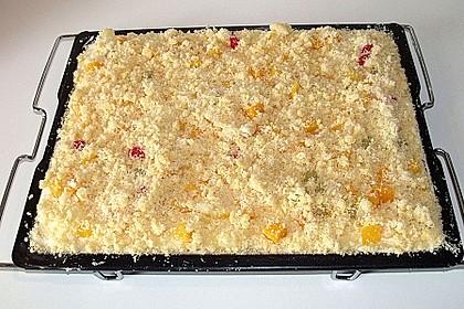 Schneller Quark-Streuselkuchen mit Obst 206