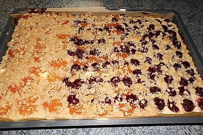 Schneller Quark-Streuselkuchen mit Obst 235
