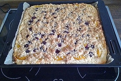 Schneller Quark-Streuselkuchen mit Obst 27