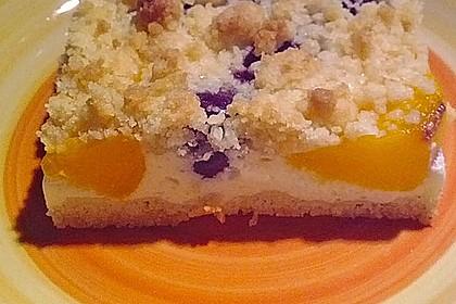 Schneller Quark-Streuselkuchen mit Obst 22