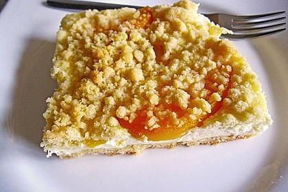 Schneller Quark-Streuselkuchen mit Obst 30