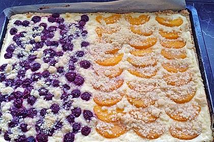 Schneller Quark-Streuselkuchen mit Obst 76