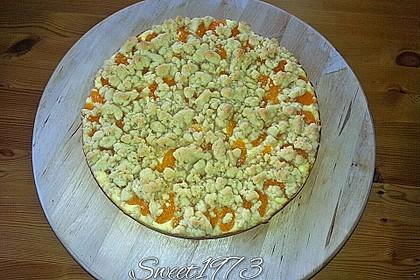 Schneller Quark-Streuselkuchen mit Obst 161