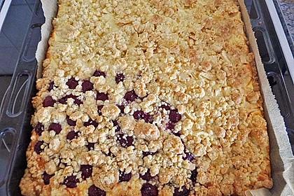 Schneller Quark-Streuselkuchen mit Obst 96